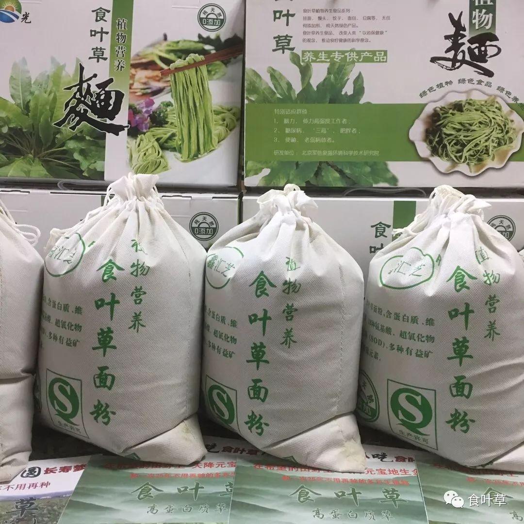 食叶草面粉